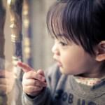 赤ちゃんの網戸対策~なるべくお金をかけない作戦5選